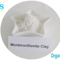 Organomodified clay used in water-borne system