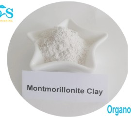Organically modified clay as organoclay control of fluid loss