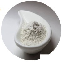 Thixotropic Clay | Organoclay Rheological Additive